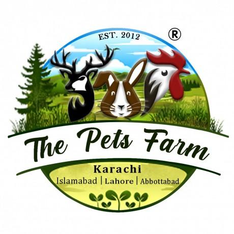 The Pets Farm