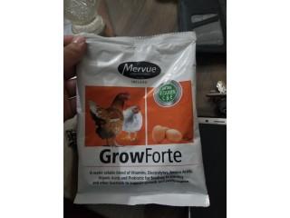 GrowForte