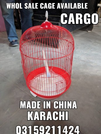 hamster-and-hamster-cage-in-karachi-big-1