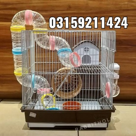 hamster-and-hamster-cage-in-karachi-big-0