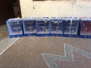 Studio cage